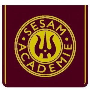 SESAM Academie